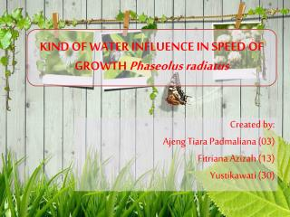 KIND OF WATER INFLUENCE IN SPEED OF GROWTH  Phaseolus radiatus