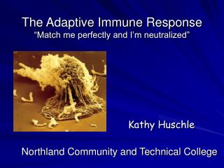 """The Adaptive Immune Response """"Match me perfectly and I'm neutralized"""""""