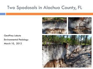 Two  Spodosols  in Alachua County, FL