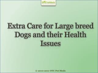 Extra care for Large breed dogs and their health issues