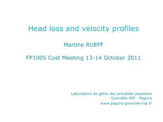 Head loss and velocity profiles Martine RUEFF FP1005 Cost Meeting 13-14 October 2011