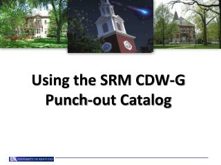 Using the SRM CDW-G  Punch-out Catalog