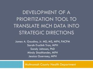 Development of a prioritization tool to translate MCH data into strategic directions