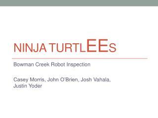 Ninja  Turtl EE s