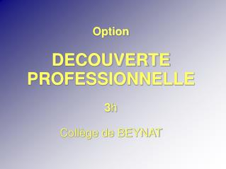 Option DECOUVERTE PROFESSIONNELLE  3 h Coll�ge de BEYNAT