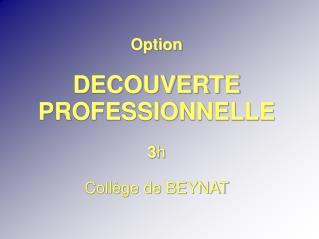 Option DECOUVERTE PROFESSIONNELLE  3 h Collège de BEYNAT