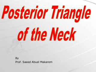 By Prof. Saeed Abuel Makarem