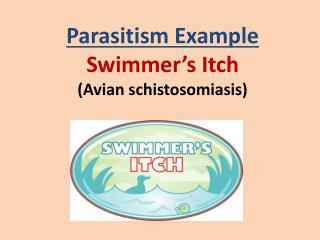Parasitism Example Swimmer�s Itch (Avian  schistosomiasis )