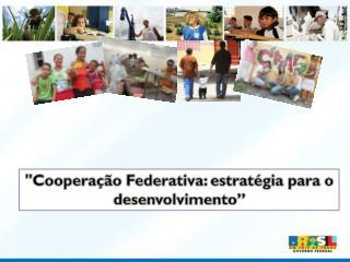 Coopera  o Federativa: estrat gia para o desenvolvimento