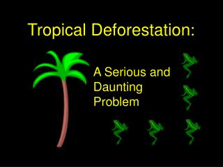 Tropical Deforestation :