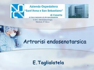 Artrorisi endosenotarsica