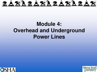 Module 4: Overhead and Underground Power Lines