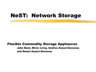 NeST:  Network Storage