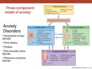 Three-component model of anxiety