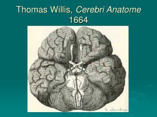 Thomas Willis,  Cerebri Anatome  1664
