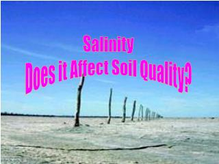 Salinity Does it Affect Soil Quality?