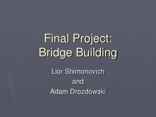 Final Project: Bridge Building