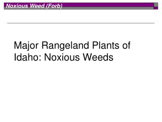 Major Rangeland Plants of Idaho: Noxious Weeds