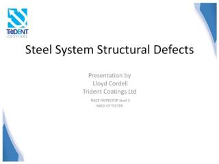 Steel System Structural Defects