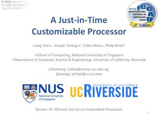 A Just-in-Time  Customizable Processor
