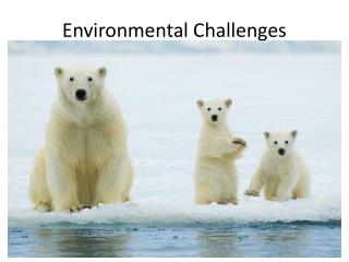 Environmental Challenges