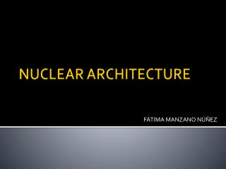 NUCLEAR ARCHITECTURE