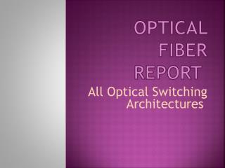 Optical Fiber Report