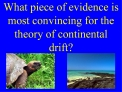 What piece of evidence is most convincing for the theory of continental drift