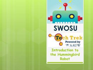 Introduction to the Hummingbird Robot