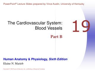 The Cardiovascular System: Blood Vessels Part B