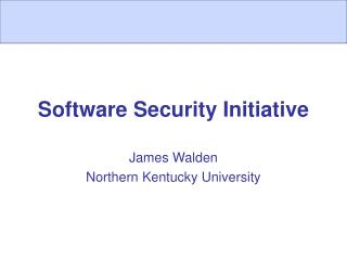 Software Security Initiative