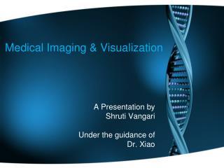 Medical Imaging & Visualization