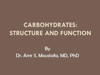 Carbohydrates: structure and Function