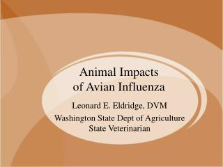 Animal Impacts  of Avian Influenza