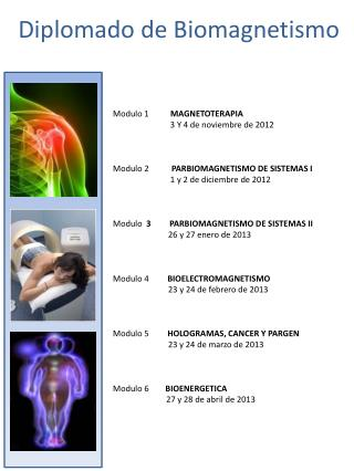 Diplomado de  Biomagnetismo