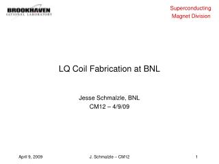 LQ Coil Fabrication at BNL