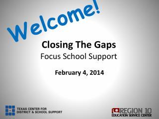 Closing The Gaps  Focus School  Support