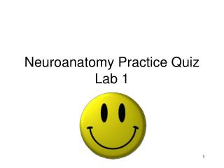 Neuroanatomy Practice Quiz Lab 1