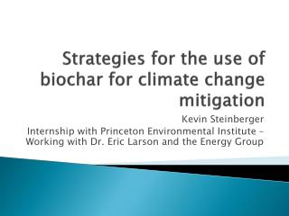 Strategies for the use of  biochar  for climate change mitigation