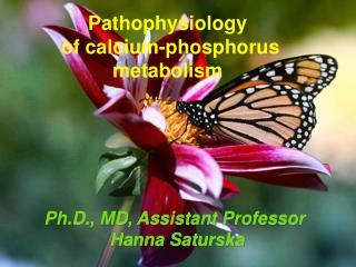Pathophysiology  of calcium-phosphorus metabolism