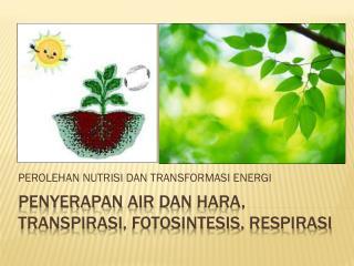 Penyerapan  air  dan hara ,  transpirasi ,  fotosintesis ,  respirasi