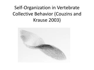 Self-Organization in Vertebrate Collective Behavior ( Couzins  and Krause 2003)