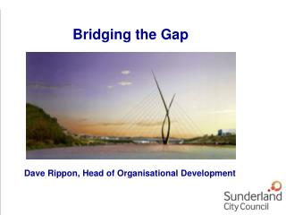 Dave Rippon, Head of Organisational Development