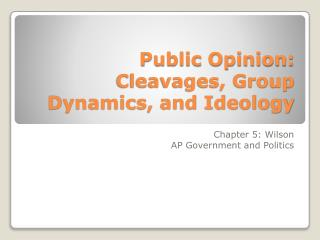 Public Opinion: Cleavages, Group Dynamics, and Ideology