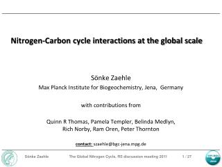 Nitrogen-Carbon cycle interactions at the global scale