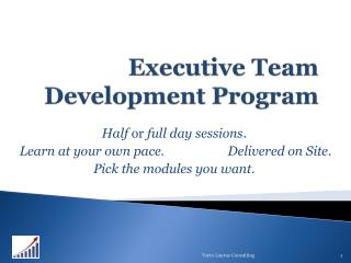 Executive Team Development Program