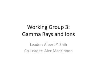 Working Group 3: Gamma Rays and Ions