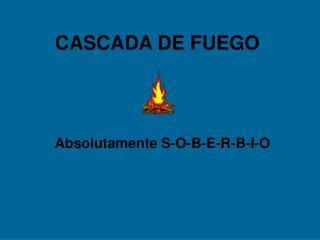 CASCADA DE FUEGO
