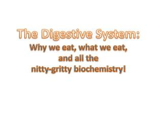 The Digestive System: Why we eat, what we eat, and all the nitty-gritty biochemistry!