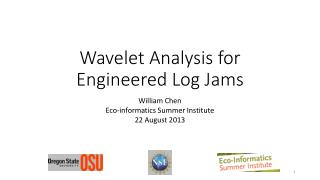Wavelet Analysis for Engineered Log Jams
